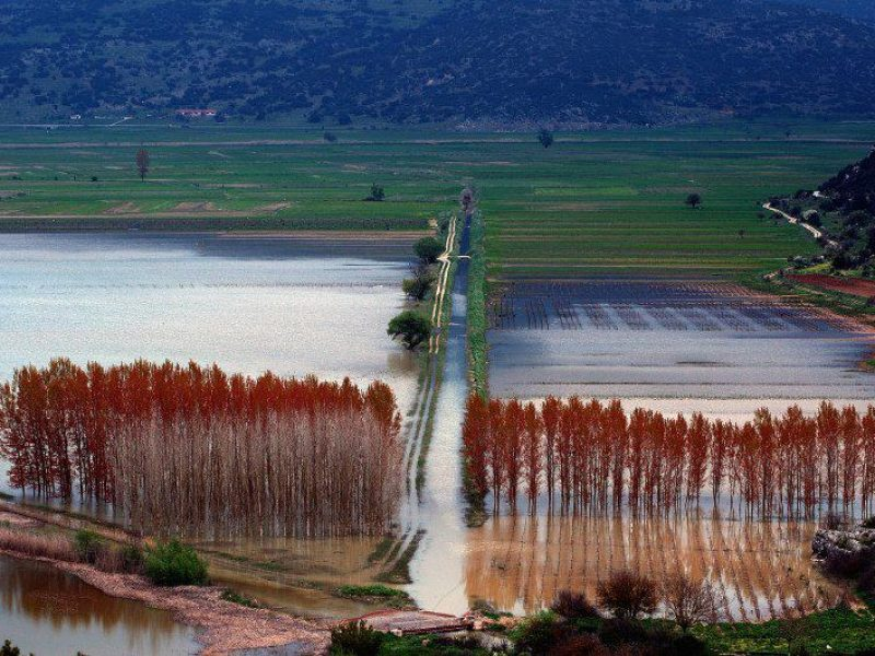 lake stymfalia agrotourism